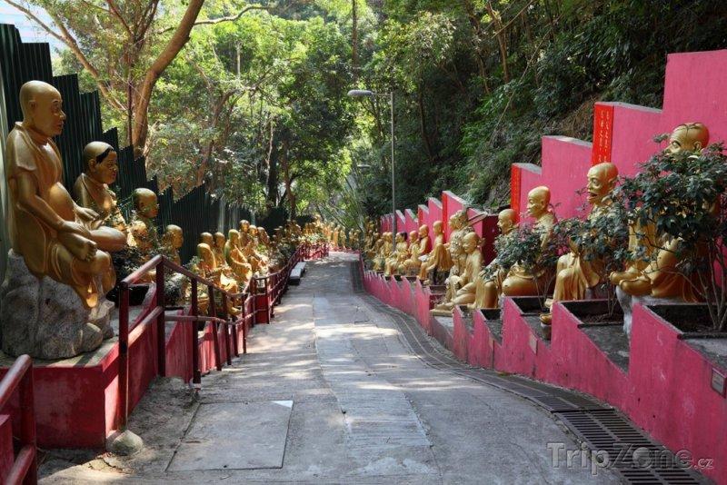 Fotka, Foto Chrám 10 000 Buddhů (Hongkong)