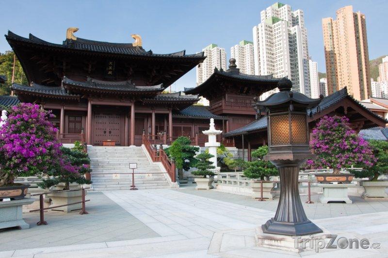 Fotka, Foto Chrám Chi Lin Nunnery (Hongkong)