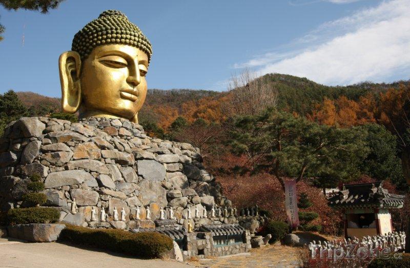 Fotka, Foto Chrám Woljeongsa (Jižní Korea)