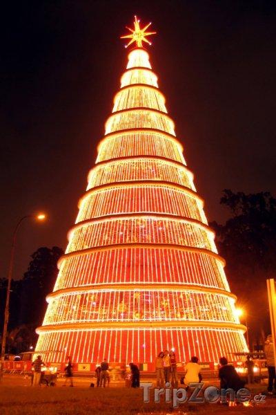 Fotka, Foto Gigantický vánoční strom (Sao Paulo, Brazílie)