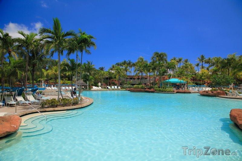 Fotka, Foto Hotelový bazén (Nassau, Bahamy)