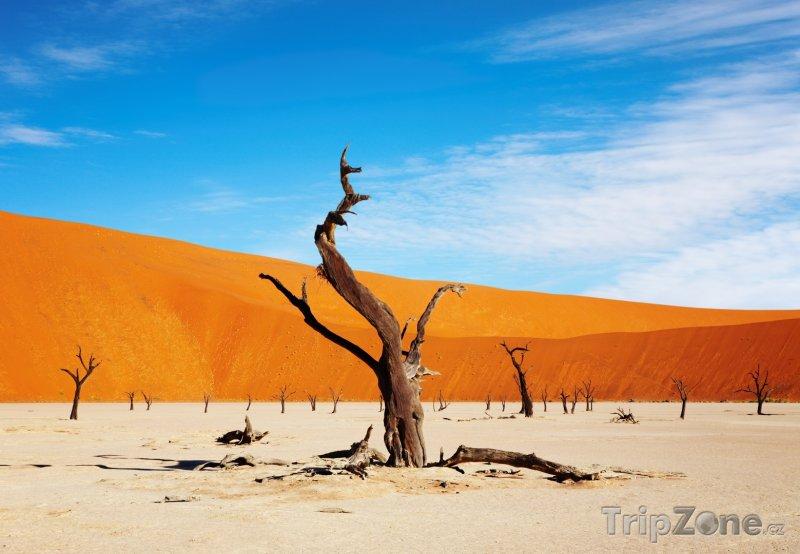 Fotka, Foto Jílová pánev Sossusvlei (Namibie)
