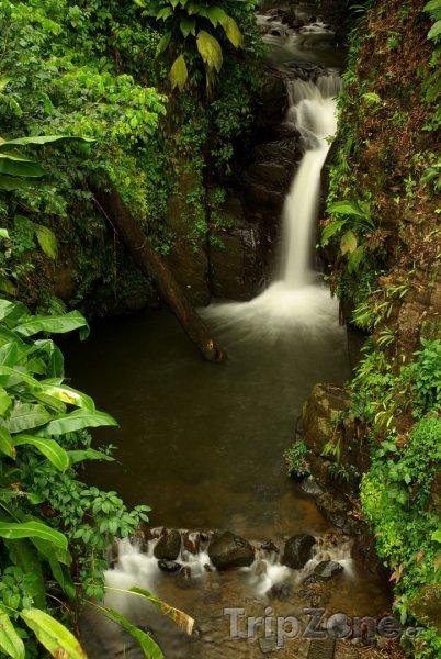 Fotka, Foto Malý vodopád v deštném pralese (Martinik)