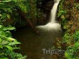Malý vodopád v deštném pralese