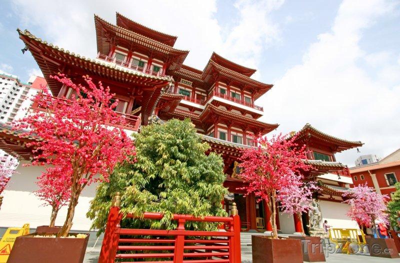 Fotka, Foto Muzeum Buddha Tooth Relic (Singapur)
