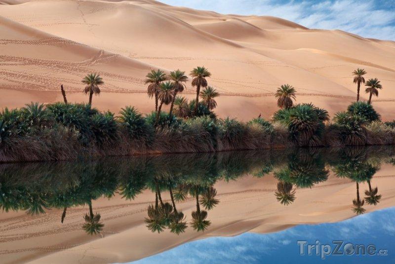 Fotka, Foto Oáza v saharské poušti (Libye)