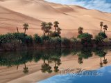 Oáza v saharské poušti