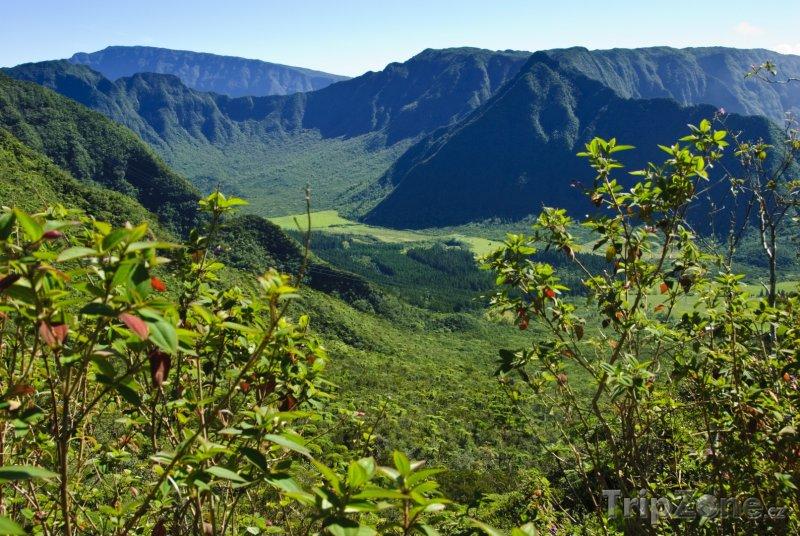 Fotka, Foto Oblast La Plaine-des-Palmistes (Réunion)