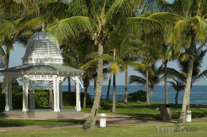 Fotka, Foto Oblíbené místo svatebních obřadů (Nassau, Bahamy)