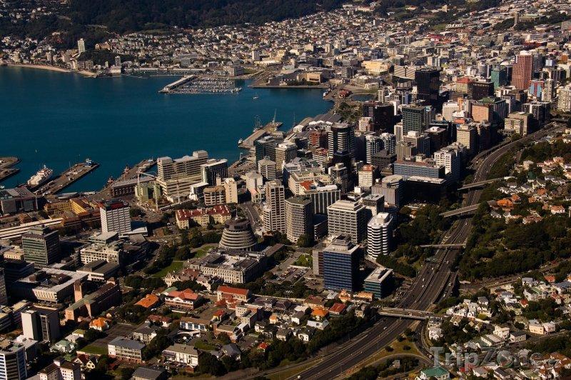 Fotka, Foto Panoráma města (Wellington, Nový Zéland)