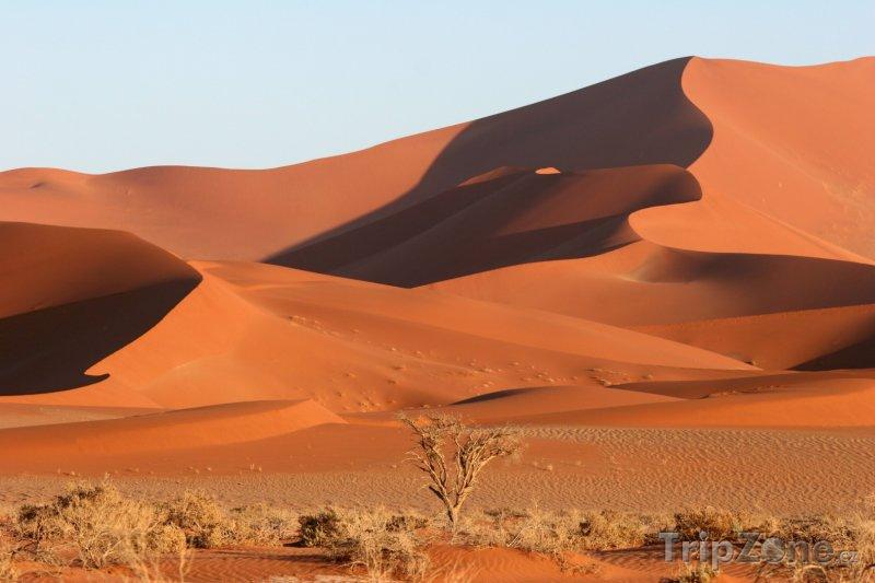 Fotka, Foto Písečné duny v namibské úpoušti (Namibie)