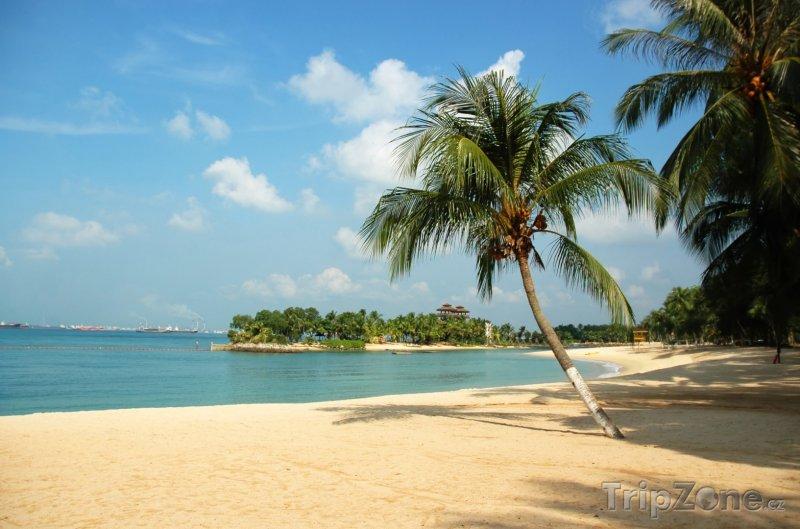 Fotka, Foto Pláž na ostrově Sentosa (Singapur)