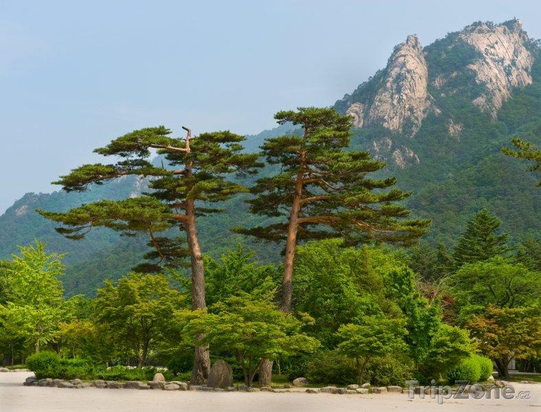 Fotka, Foto Pohled do parku Seoraksan (Jižní Korea)