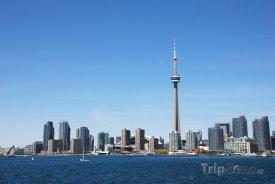 Pohled na CN Tower z přístavu