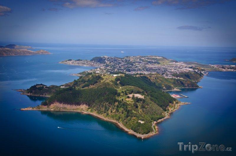 Fotka, Foto Poloostrov Miramar (Wellington, Nový Zéland)