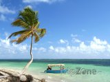 Punta Cana, palma a loďka
