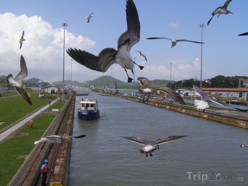 Fotka, Foto Rackové nad Panamským průplavem (Panama)