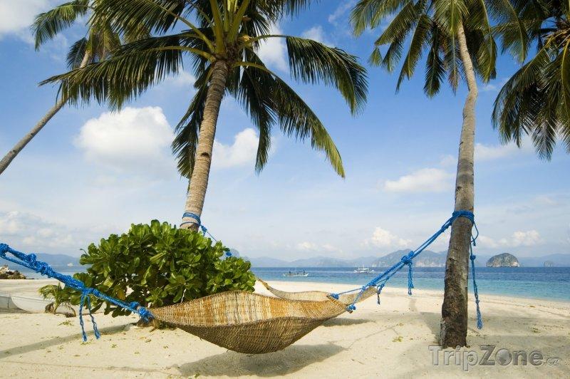 Fotka, Foto Ratanová houpací síť na ostrově Palawan (Filipíny)