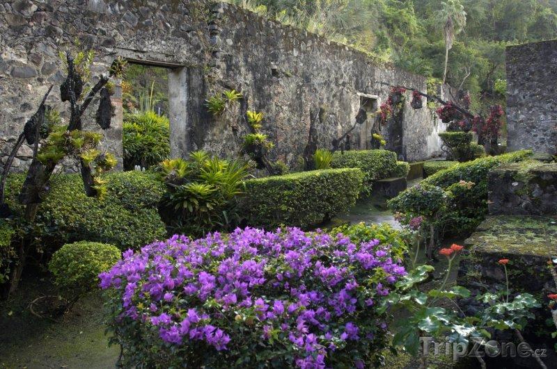 Fotka, Foto Ruiny v obci Le Carbet (Martinik)