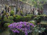 Ruiny v obci Le Carbet
