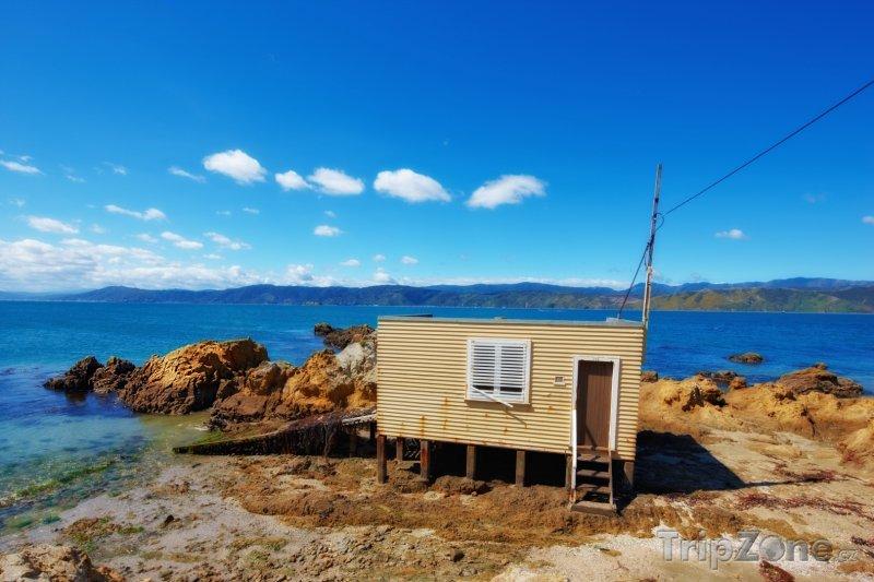 Fotka, Foto Rybářský domek v Karaka Bay (Wellington, Nový Zéland)