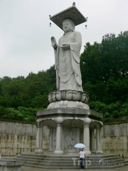 Fotka, Foto Socha Buddhy u chrámu Bongeunsa (Soul, Jižní Korea)