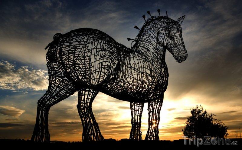 Fotka, Foto Socha koně u dálnice M8 (Glasgow, Velká Británie)