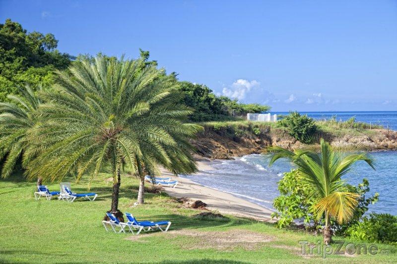Fotka, Foto Soukromá pláž na ostrově Antigua (Antigua a Barbuda)
