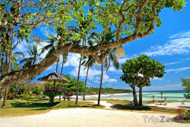 Fotka, Foto Tropický resort (Filipíny)