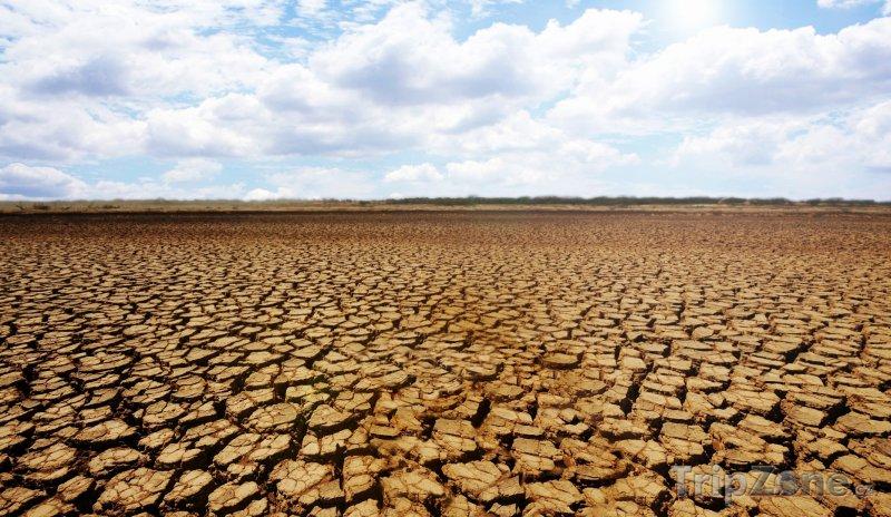 Fotka, Foto Vyprahlá zem v Národním parku Sarigua (Panama)