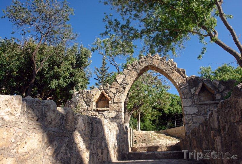 Fotka, Foto Zahrada (Pafos, Kypr)