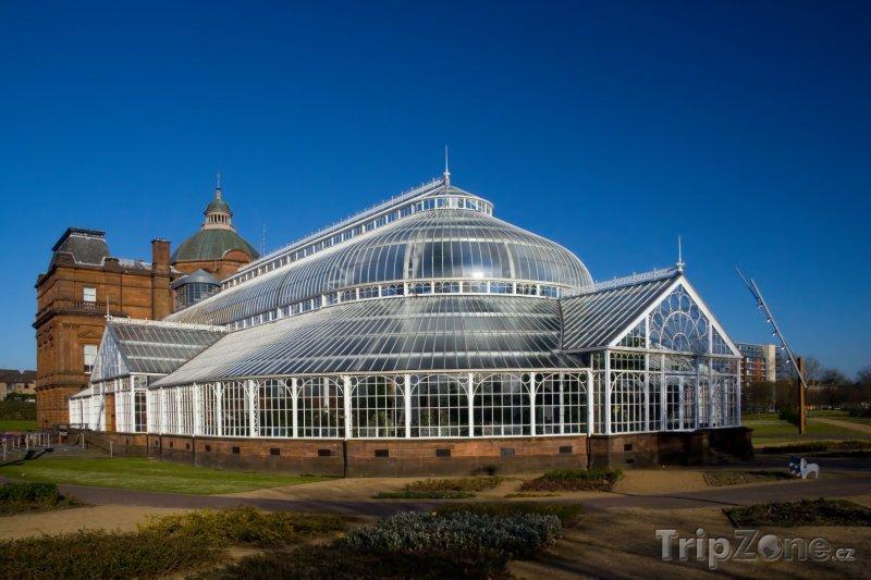 Fotka, Foto Zimní zahrada v People's Palace (Glasgow, Velká Británie)