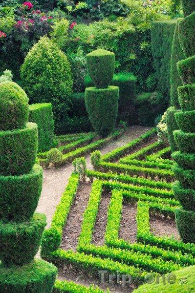 Fotka, Foto Botanická zahrada (Funchal, Portugalsko)