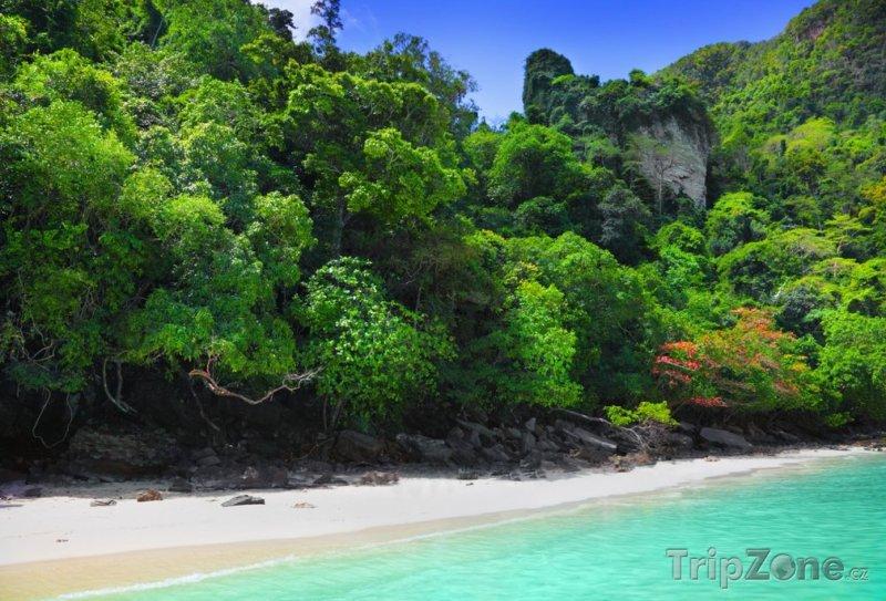 Fotka, Foto Exotická pláž (Phuket, Thajsko)