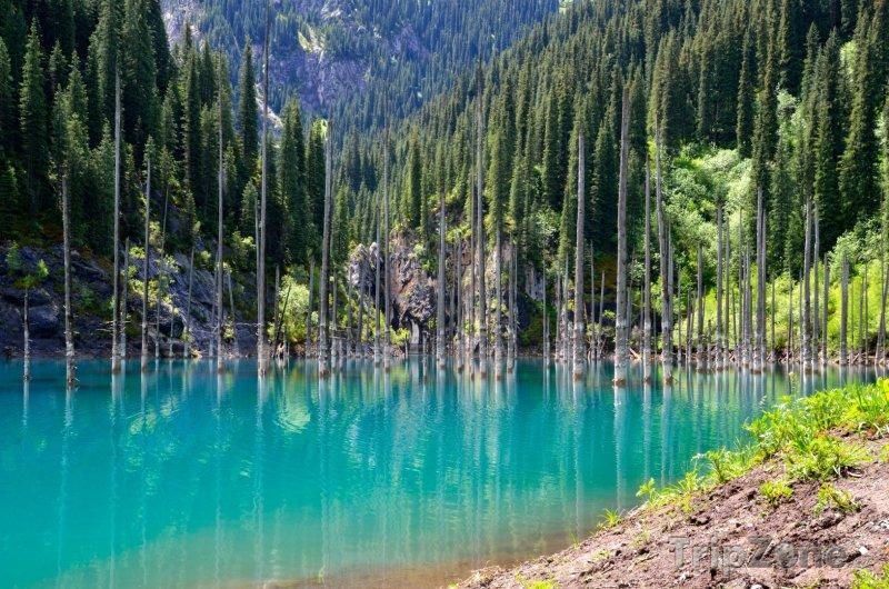 Fotka, Foto Jezero Kaindy (Kazachstán)