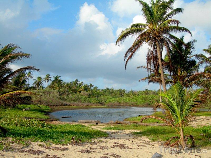 Fotka, Foto Jezírko na Corn Islands (Nikaragua)