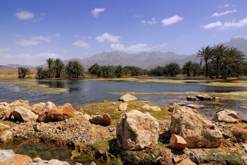Fotka, Foto Krajina na ostrově Socotra (Jemen)