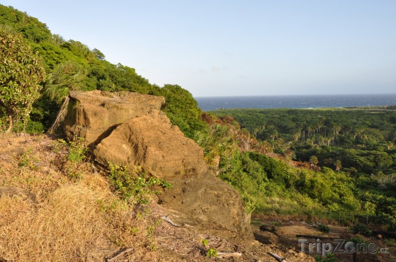 Fotka, Foto Krajina na ostrově Útila (Honduras)