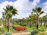 Královský park