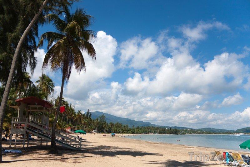 Fotka, Foto Luquillo Beach (Portoriko)