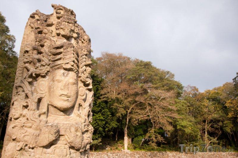 Fotka, Foto Mayský monument stelae (Honduras)