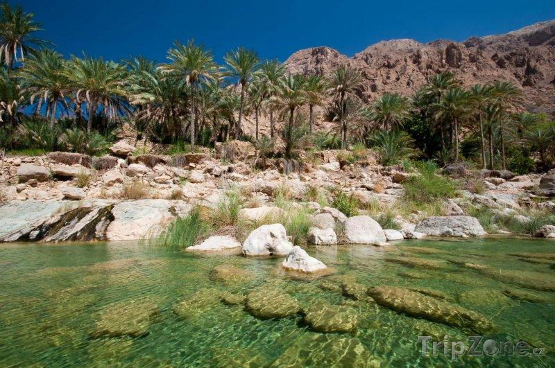Fotka, Foto Oáza v poušti (Omán)