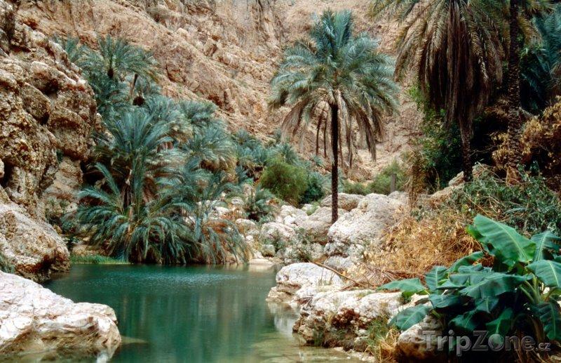 Fotka, Foto Oáza v údolí Wadi Shab (Omán)