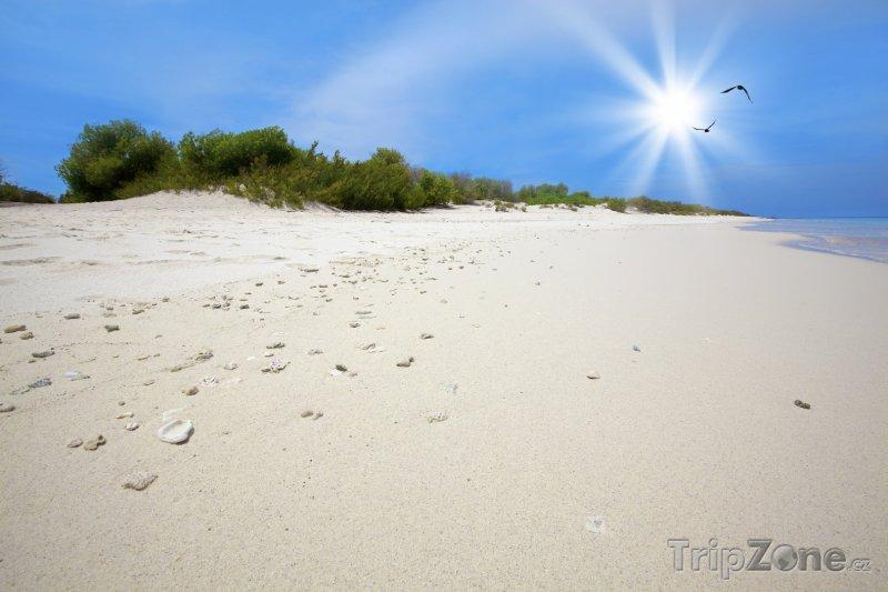 Fotka, Foto Ostrůvek Klein (Bonaire)