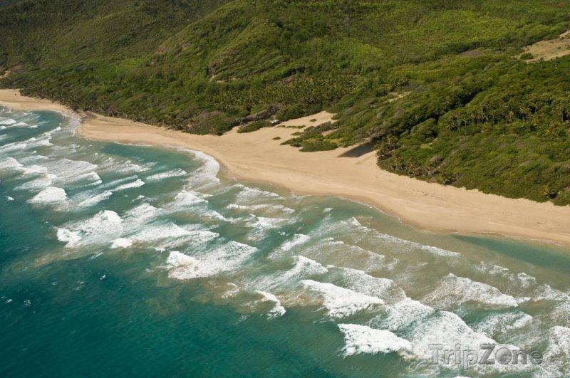 Fotka, Foto Pláž Grande Anse (Guadeloupe)