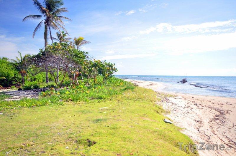 Fotka, Foto Pláž na Corn Islands (Nikaragua)