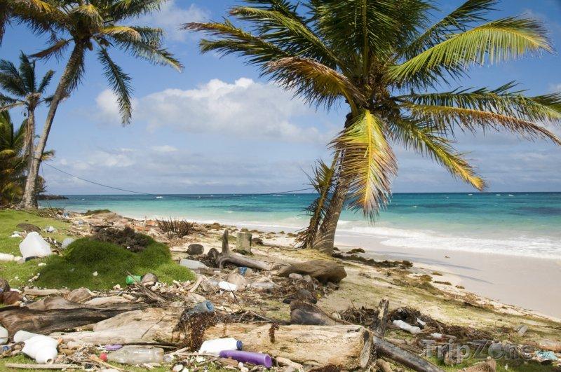 Fotka, Foto Pláž Sallie Peachie na Corn Islands (Nikaragua)