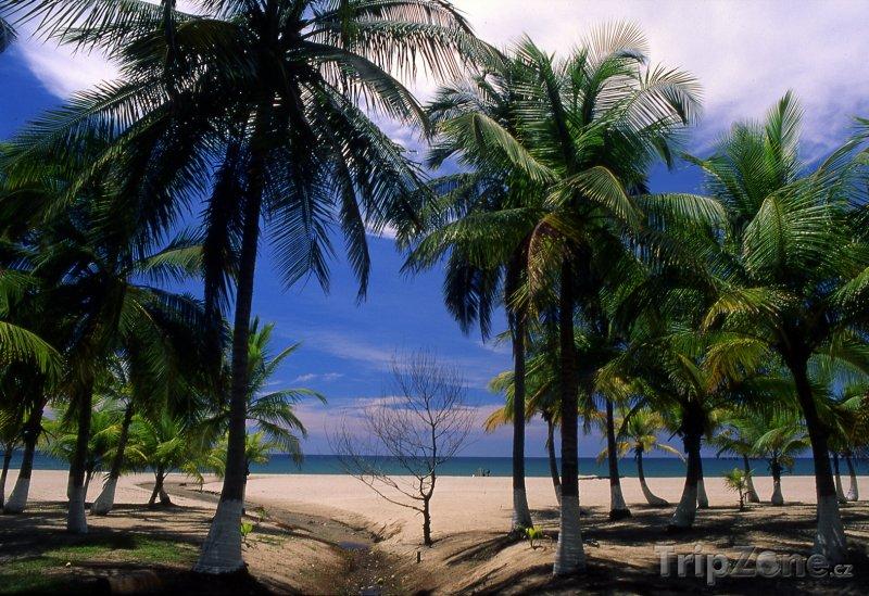 Fotka, Foto Pláž Tranquil ve městě Tela (Honduras)