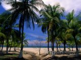Pláž Tranquil ve městě Tela