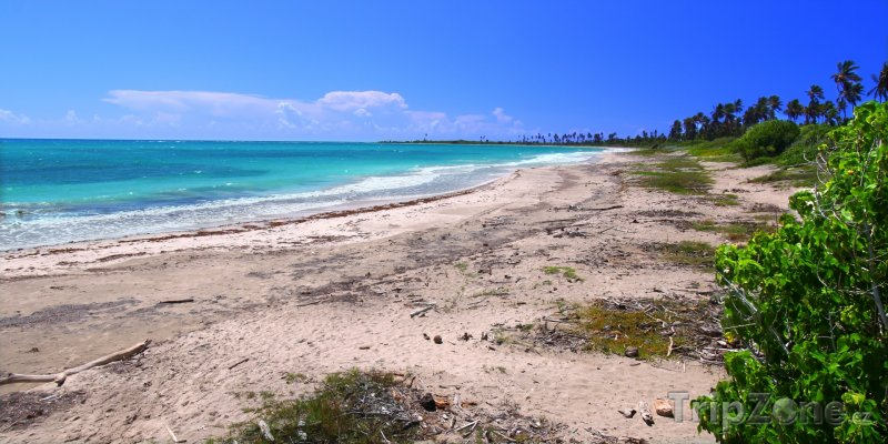 Fotka, Foto Pláž u města Guánica (Portoriko)